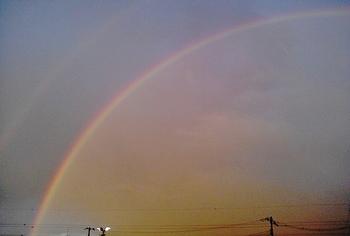 大きな虹.JPG